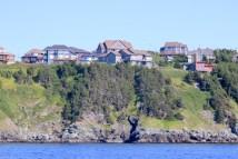 Conception Bay coast2